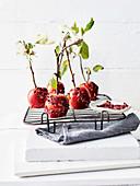 Karamelläpfel mit Rosen