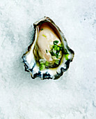 Oyster on crushed ice with Thai dressing