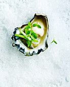 Oyster on crushed ice with green apple and wasabi