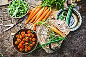 Frisch geerntetes Gemüse: Tomaten, Rucola, Möhren und Zucchini