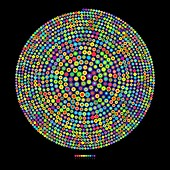 Pi frequency distribution representation, illustration