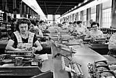 Typewriter factory, 1960s
