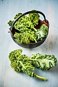 Kale (Brassica oleracea var. Sabellica L)