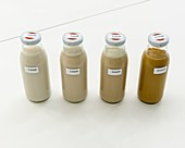 Prototype milk drinks