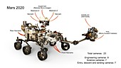 Mars 2020 rover cameras, illustration