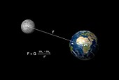 Newton's law of gravitation and the Earth-Moon system