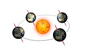 Earth's orbit and solstices and equinoxes, illustration