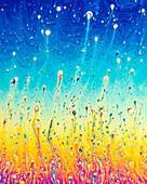 Soap bubble film iridescence