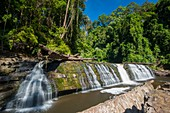 Imbak Falls, Borneo