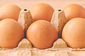 Six chicken eggs in box