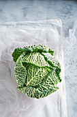 Still life of green cabbage
