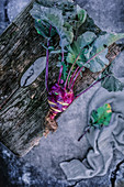 Purple kohlrabi with leaves