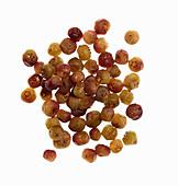 Muntari berries