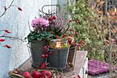 Herbst-Arrangement mit Windlicht im Drahtkorb