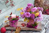 Kleiner Chrysanthemen-Strauß und Kerze in rosafarbenen Töpfen