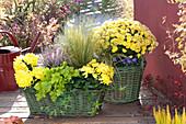 Herbst-Arrangement in gelb und grün