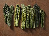 Mehrere Cavolo-Blätter nebeneinander