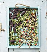 Okra, Chilischoten und schwarze Maiskolben auf blauem Holztablett
