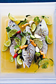 Fish in a Caribbean grill marinade with limes and lemongrass