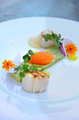 Fried scallops with carrot mousse