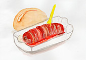 Currywurst with bread rolls (illustration)