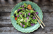Salad with vegetable and rosebay flowers