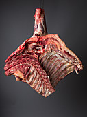 Forequarter of beef (inside)