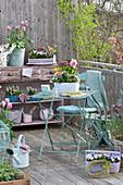 Frühlings-Balkon mit Frühlingsblühern