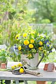 Blau - gelber Frühlingsstrauß in Deko - Gießkanne