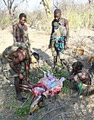 Hadza hunting party with kill