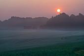 Misty rural landscape at sunrise