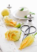 Zucchini flowers and ricotta