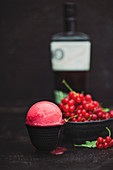 Red currant sorbet with gin