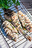 Grilled fish with herbs on a grilling basket