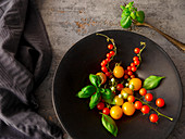 Various mini tomatoes with basil in a metal bowl
