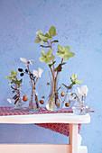 Winterliche Blütendeko mit Alpenveilchen und Christrosen in Glasvasen