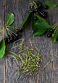 Cherry stems for tea preparation