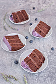 Four pieces of chocolate and blueberry cake