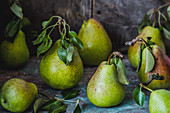 The harvest of pears