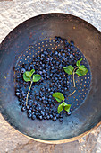 Freshly washed wild blueberries and mint leaves, in an antique colander, on an stone surface