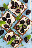 Vegan cream cheese with blackberries on a rye crisp bread