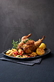Loue chicken with lemons, oregano and olives (France)