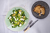 A salad with grilled zucchini, beans, oregano, goat's cheese and grilled bread
