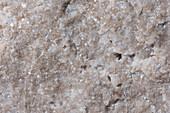 Dolomit Peitlerkofel 105-1 Bruch 4x - Dolomit, frische bruchfläche, 4:1