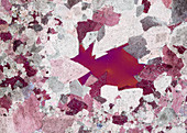 Dolomit Peitlerkofel 105-4 PPol 60x - Dolomit Gesteinsdünnschliff, 60:1