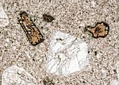 Rhyolith Traisen 120-5 HF 60x - Rhyolith, Dünnschliff, 60:1