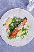 Roasted salmon coated with sesame seeds paired with lemon, arugula, radishes and avocado