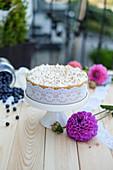 Blaubeer-Baiser-Torte