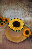Sunflower cake