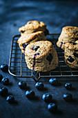 Vegane Blaubeerscones auf Abkühlgitter vor dunklem Hintergrund